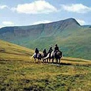 Cantref Trekking & Riding Centre